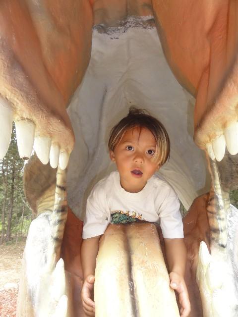 boy eaten by dinosaur austin tx bastrop
