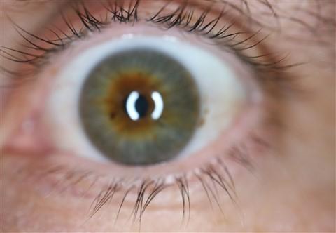 macro eyelashes