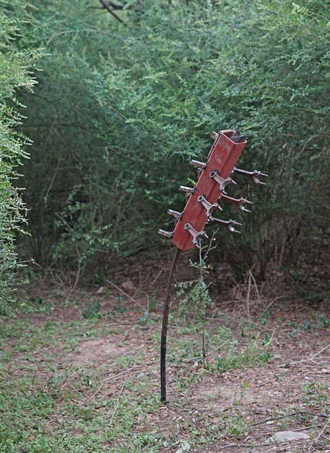 paul schuster sculptor garden 78746 austin westlake