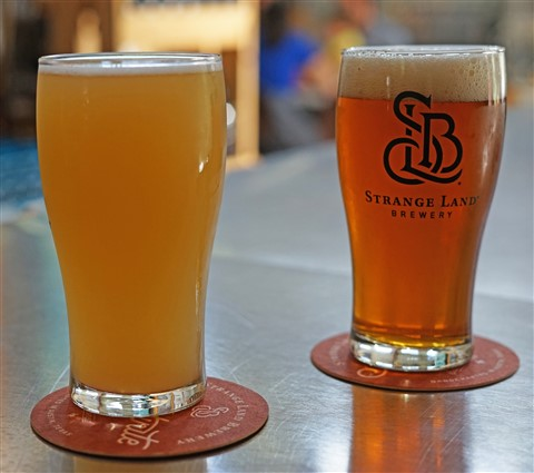 Strangeland Brewing Austin 78746 gose and ipa