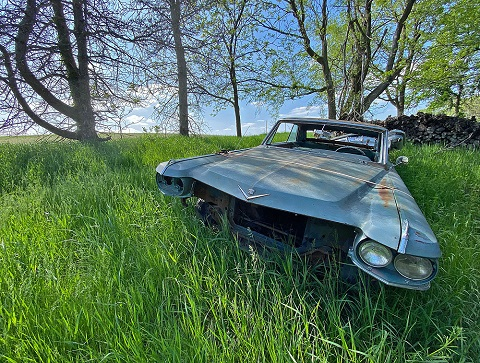 old cadillac in the field