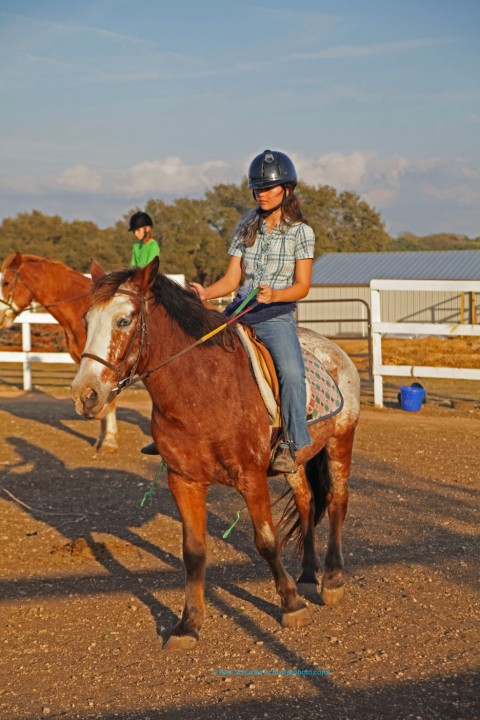 english riding lesson at bel canto farms wimberley