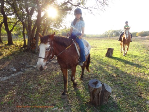 horse trail ride wimberley bel canto farms