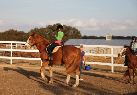 horse riding lesson in tx hill country