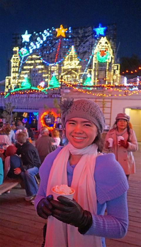 mozart's coffee roasters holiday light show 2015 austin