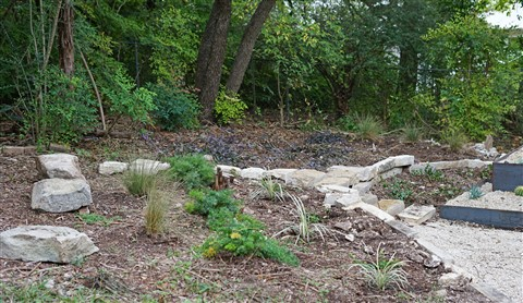 landscaping 78746