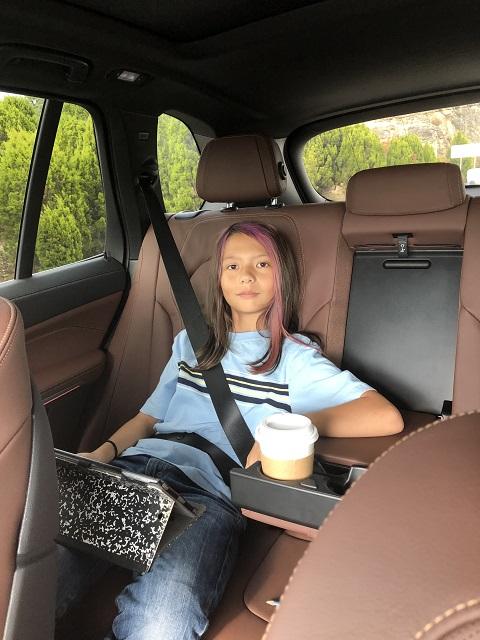 bmw x5 540i 2019 back seat