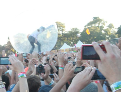 wayne in the gerbil ball acl 2010