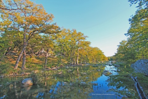 blanco river fall color wimberley cypress and maple trees