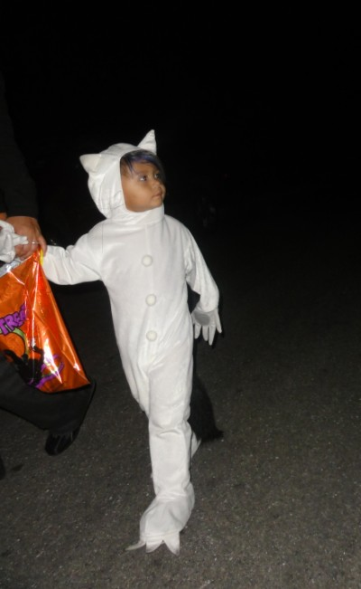 max costume where the wild things are austin