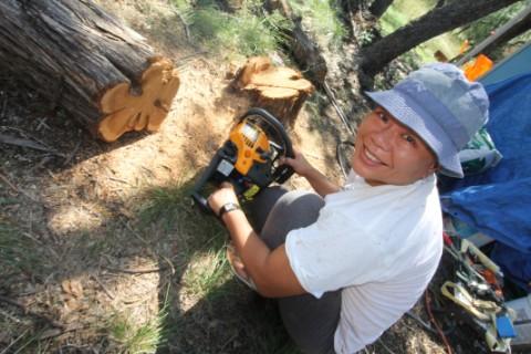 wimberley chainsaw artist