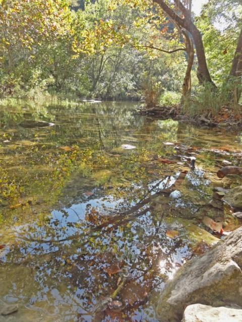 fall colors lost creek greenbelt austin texas 2012