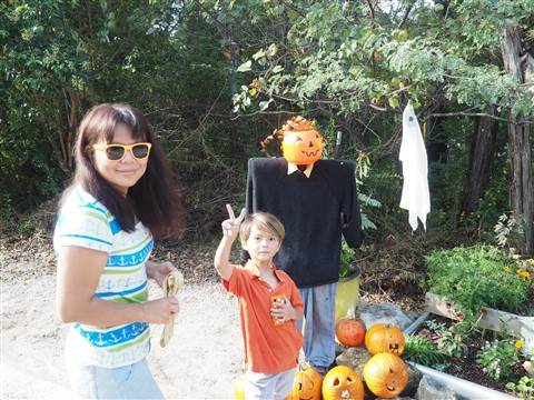 austin west lake hills halloween shrine 2014