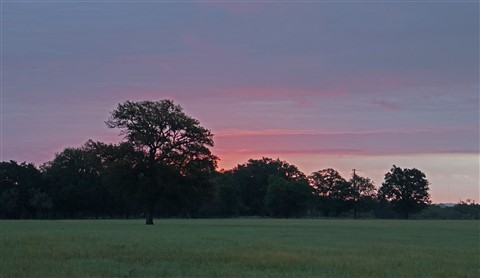sunrise fredericksburg texas ranch