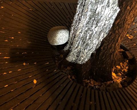 boulder and tree sidewalk uptown dallas alcove wine bar