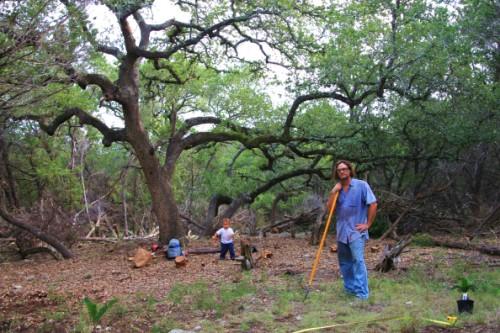 wimberley oak