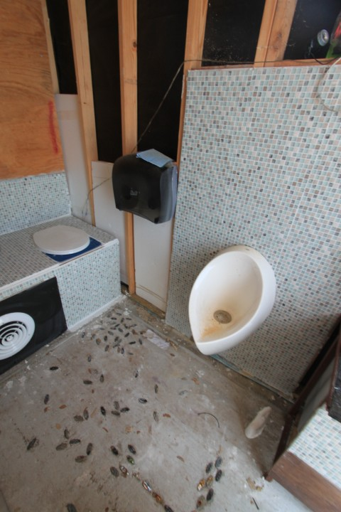 waterless urinal and composting toilet wimberley