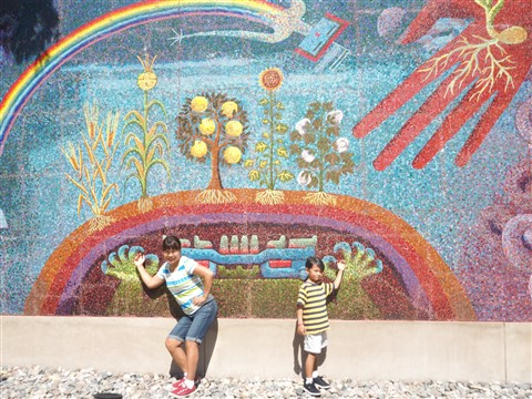 dma mosaic