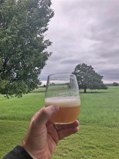 neipa home brew
