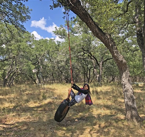 tire swing wimberley texas